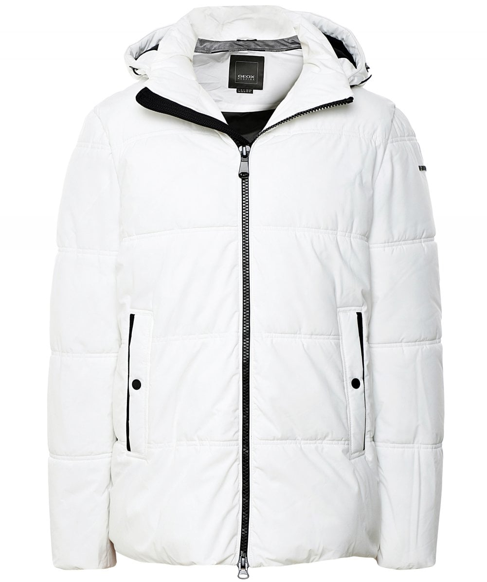 Frugale Estrazione Paralizzare  Geox Water-Repellent Quilted Broderick Jacket | Jules B