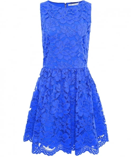 Alice and Olivia Ginger Lace Skater Dress